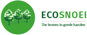 Logo ecosnoei